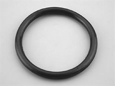 O-ring for Astral lamp pool lampe